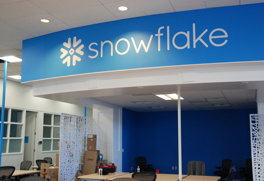 large snow flake logo